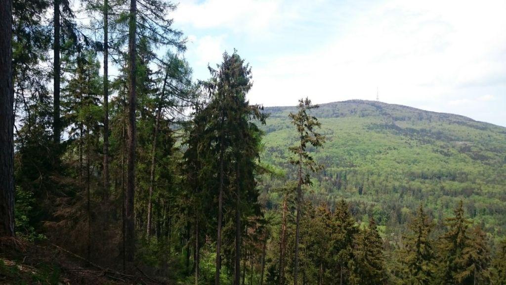 sleza-widziana-ze-stoku-raduni-05-2017-4
